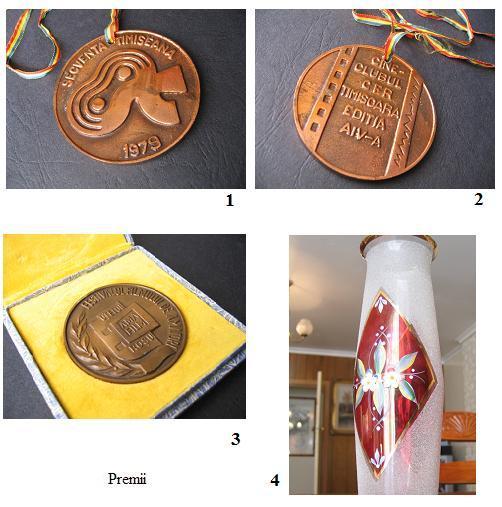 Premii in Romania